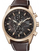 Citizen Elegant [AT8019-02W]